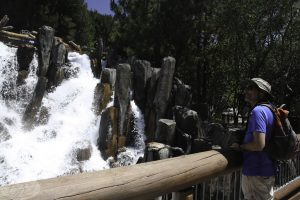 Disney Park - Grizzly River Run